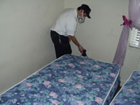 Technician treating mattress for bed bugs