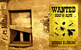 Old west scene with wanted poster showing pests